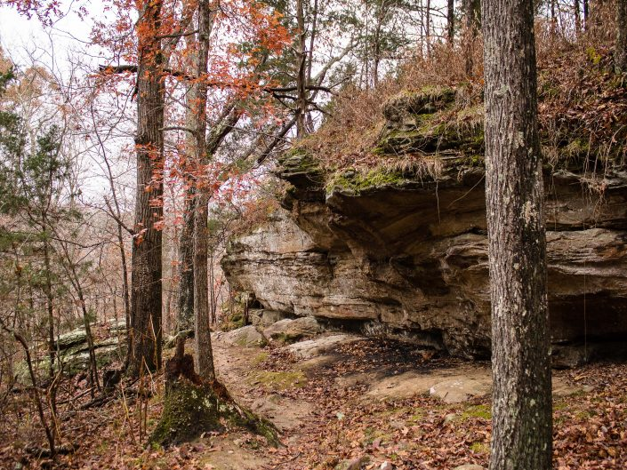 Ferne Clyffe State Park Waterfall Trail - Goreville, Illinois
