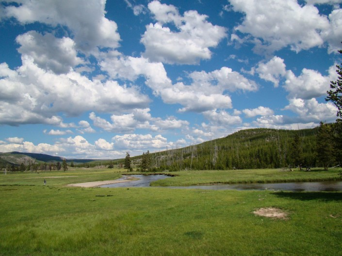 Madison River, Yellowstone National Park, Wyoming