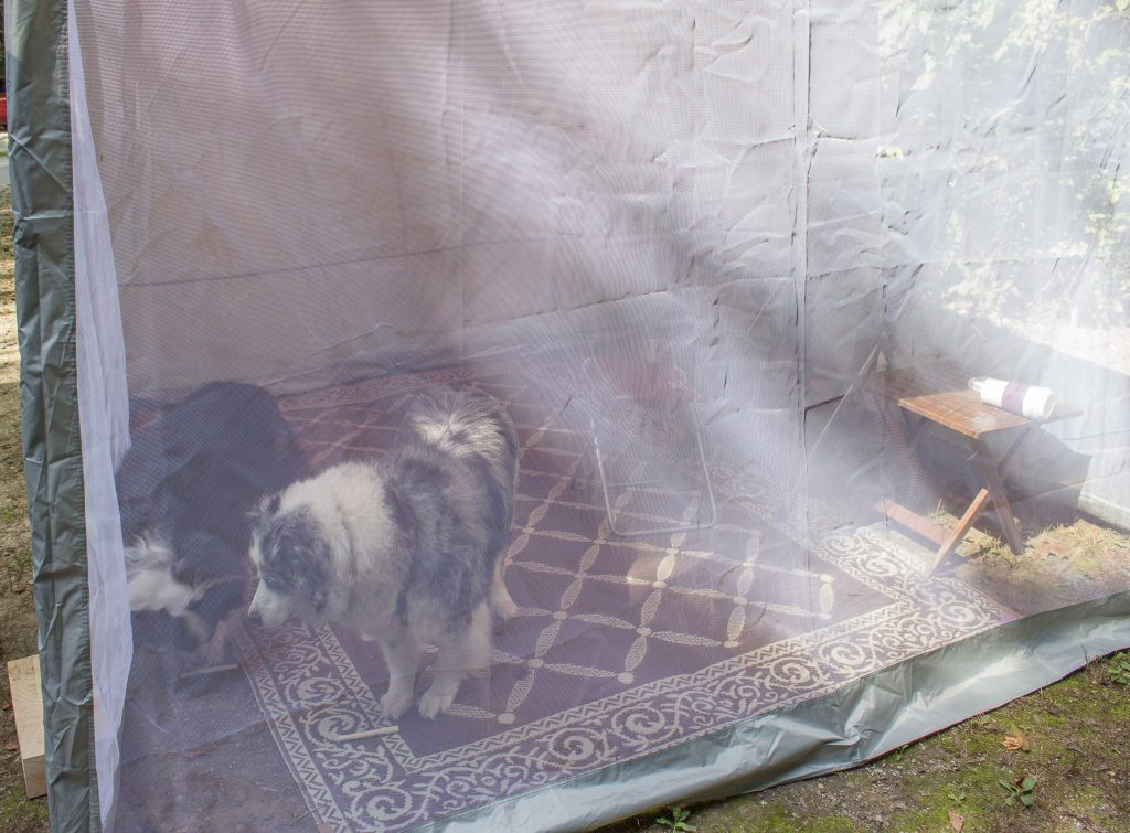 Dogs in tent - Fox Ridge State Park, Charleston Illinois