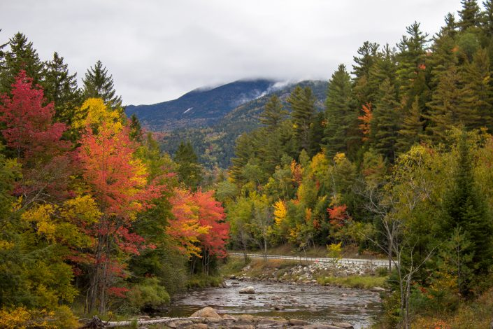 Fall Colors - Adirondack, New York
