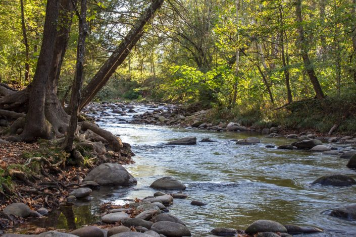 Little Pigeon River - Gatlinburg, TN