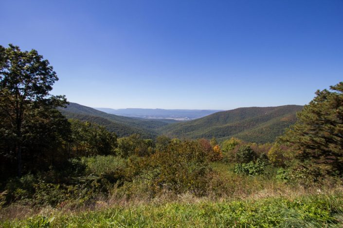 Skyline Drive - Shenandoah National Park