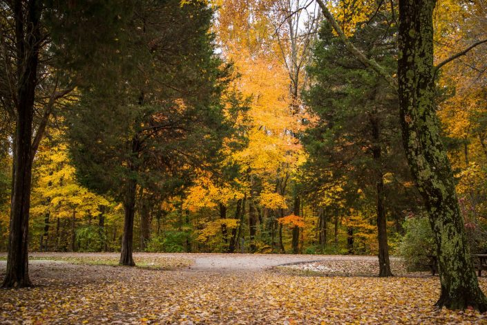 Fall Colors - Hardy Lake Campground, Hardy Lake State Park
