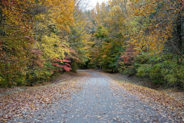 Fall Colors - Hardy Lake Campground, Hardy Lake State Par