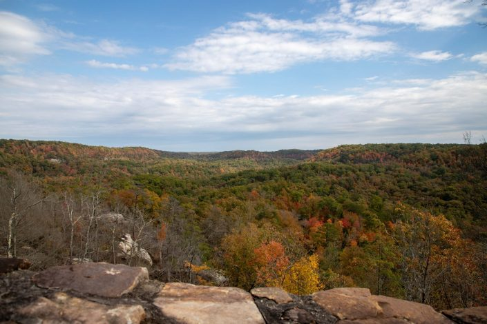 Natural Arch Scenic Area - Daniel Boone National Forest - Kentucky