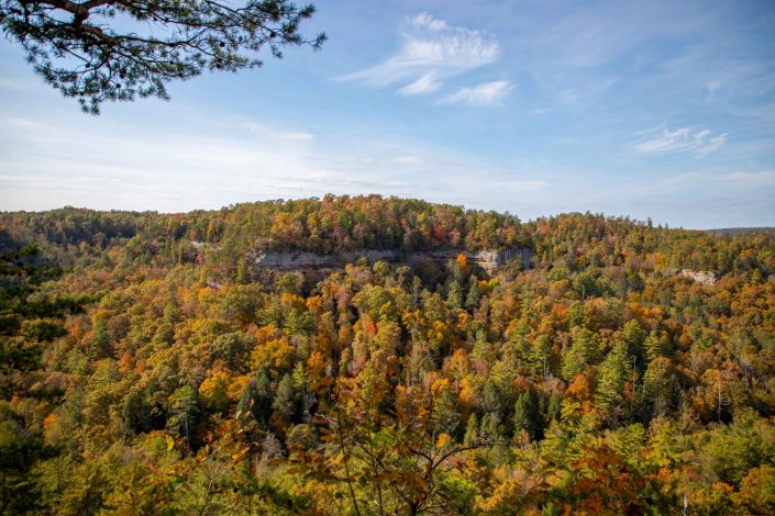 Red River Gorge - Daniel Boone National Forest - Kentucky